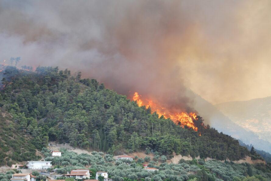 Son 24 saatte 91 farklı yerde orman yangını çıktı